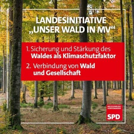 Initiative Unser Wald in MV