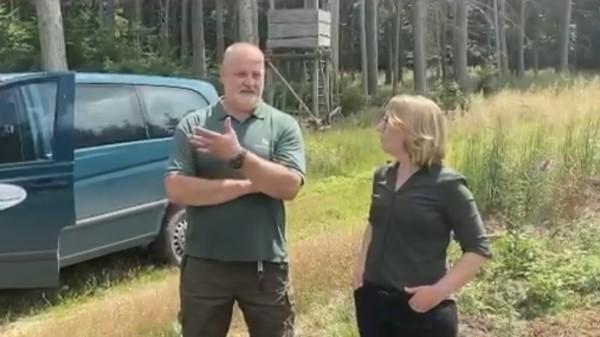 Wald MV